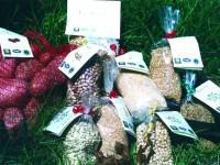 Azienda Agricola Biologica L'Agriturismo l'Oasi