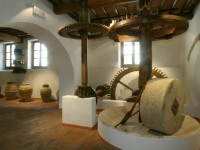 Museo del Vino e dell'Olio