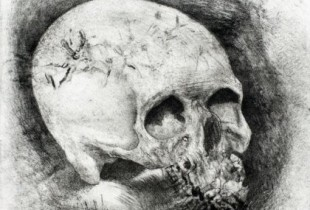 maldague vanitas