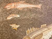 Particolare di un mosaico all'interno del museo