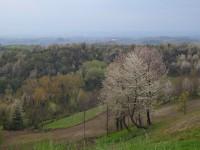 Paesaggio del Comune di Albugnano (AT)