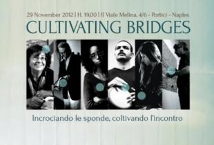 cultivating bridges