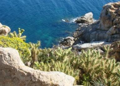 Settimana selvatica in Sardegna