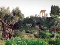 Akragas e i suoi giardini