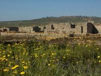 Aree Archeologiche di Mazzarino